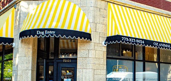 Commercial Window Awning